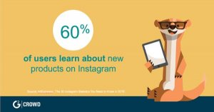 social media usage statistics